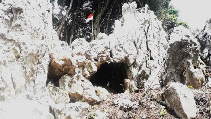 gua di Jorong Binu, Nagari Kamang Hilia, Kecamatan Kamang Magek. Gua itu ditemukan warga sekitar setahun lalu.