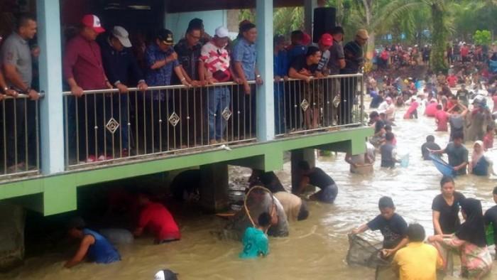 Kendati hujan mengguyur, masyarakat ranah Nagari Kunangan Parit Rantang,  Kecamatan Kamang Baru, Sijunjung, tetap antusias mengikuti tradisi panen raya ikan larangan di Wahana Wisata Telabang Sakti, sebuah objek wisata, Minggu (19/8/2018).