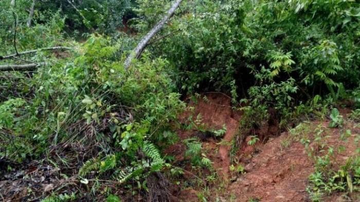 Akibat hujan yang berkepanjangan Palembayan kembali dihajar banjir dan longsor