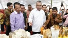 Mendes PDTT Minta Pemda Bengkulu Arahkan Dana Desa untuk BUM Desa
